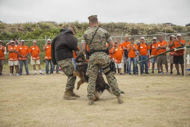 U.S. Marine Cpl Tyler Mantia with Camp Pendleton Military Police K9 Unit demonstrates his dog's capabilities during the K9 upgrade project aboard Camp Pendleton, Calif, June 7, 2017. Volunteers painted and repaired kennels as well as constructed a new shade structure and obstacle courses to increase the quality of training.