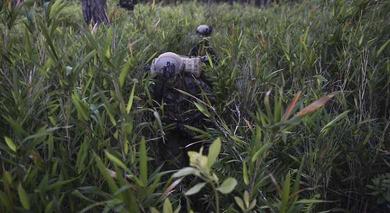 Marine Special Operations School Individual Training Course students ruck through thick vegetation during Field Training Exercise Raider Spirit, May 1, 2017, at Camp Lejeune, N.C. For the first time, U.S. Air Force Special Tactics Airmen spent three months in Marine Special Operations Command's Marine Raider training pipeline, representing efforts to build joint mindsets across special operations forces.  (U.S. Air Force photo by Senior Airman Ryan Conroy)