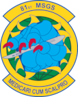 81st Surgical Operations Squadron