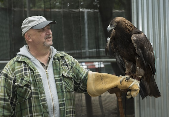 Retired Master Sgt. Randy Couch, volunteer for the California Raptor Center, describes the attributes of a golden eagle at the California Raptor Center, University of California, Davis, June 8, 2017. Couch has been a volunteer at the rehabilitation center for over five years. (U.S. Air Force photo/ Heide Couch)