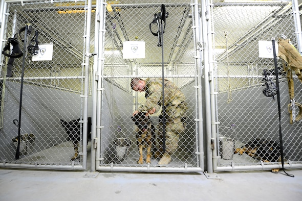 U.S. Air Force Senior Airman Carlton Isaacson, a military working dog handler assigned to the 407th Expeditionary Security Forces Squadron fastens the leash on his military working dog Egon, prior to patrols May 23, 2017, in Southwest Asia. Isaacson and Egon have been partners for two years now and are deployed in support of Operation Inherent Resolve. Military working dogs are the first line of defense when it comes to explosive detection and provide security sweeps throughout the installation. (U.S. Air Force photo by Tech. Sgt. Andy M. Kin)