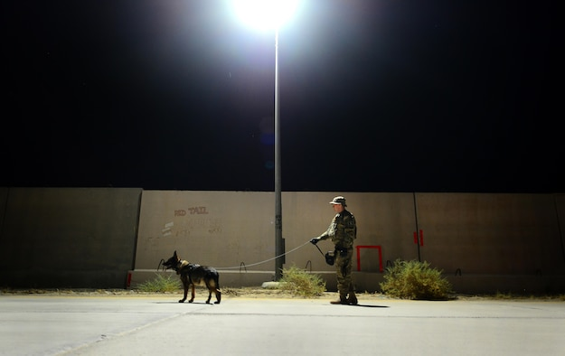 U.S. Air Force Senior Airman Carlton Isaacson, a military working dog handler assigned to the 407th Expeditionary Security Forces Squadron and his partner Egon, patrol the flightline May 23, 2017, in Southwest Asia. Isaacson and Egon have been partners for two years now and are deployed in support of Operation Inherent Resolve. Military working dogs are the first line of defense when it comes to explosive detection and provide security sweeps throughout the installation. (U.S. Air Force photo by Tech. Sgt. Andy M. Kin)