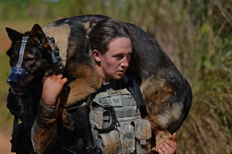U.S. Air Force Staff Sgt. Victoria Dames, a 35th Security Forces Squadron military working dog handler, carries MWD Elvis during the second annual Security Forces Advanced Combat Skills Assessment at Andersen Air Force Base, Guam, June 6, 2017. The Defenders Challenge provided Airmen with invaluable interaction with other security forces members by exchanging tactics and skills between those in attendance. (U.S. Air Force photo by Airman 1st Class Gerald R. Willis)