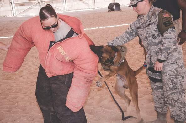 Staff Sgt. Jessica Moore (left), a mental health technician with the 386th Expeditionary Medical Group, tries to flee from military working dog Lloren, as Staff Sgt. Sara Yandell, a military working dog handler assigned to the 386th Expeditionary Security Forces Squadron, regains control of MWD Lloren during a patrol phase of training. (U.S. Air Force Photo/Master Sgt. Eric M. Sharman)