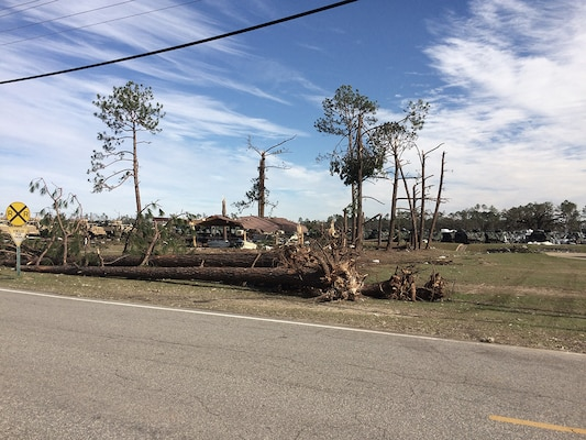 An EF3 tornado ravaged areas of Albany, Georgia, uprooting trees and destroying buildings along its 70-mile path. DLA Information Operations provided assistance to DLA Distribution employees in getting back up and operating.
