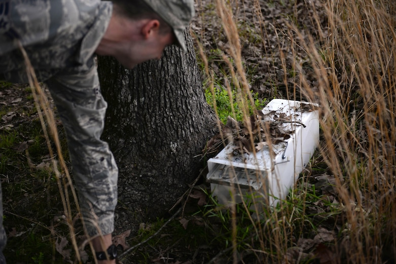 Airman 1st Class Alexander Smith, 19th Civil Engineering Squadron pest management technician, camouflages a live capture trap with leaves May 3, 2017, at Little Rock Air Force Base. Most of these live-capture traps are baited with marshmallows as the smell attracts animals. (U.S. Air Force photo by Airman Rhett Isbell)