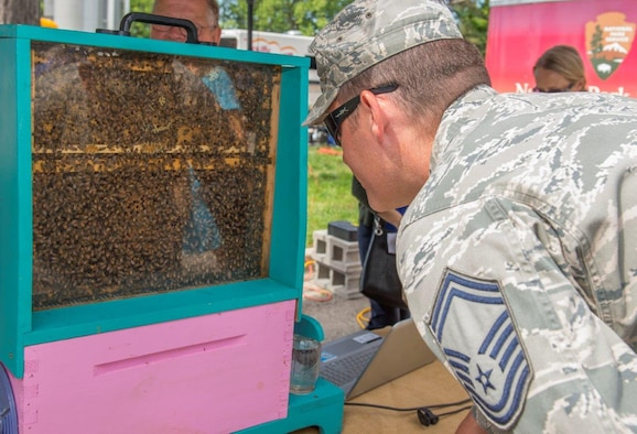 Senior Master Sgt. Benjamin Trevino,Air Force Materiel Command chaplain assistant functional manager, observes a live demonstration hive at the Pollinator Expo held at the Wright Brothers MemorialJune 21. Pollinators, also known as bees are vital to the pollination process of a third of the food people consume such as fruits,vegetables and nuts. (U.S.Air Force photo/Michelle Gigante)