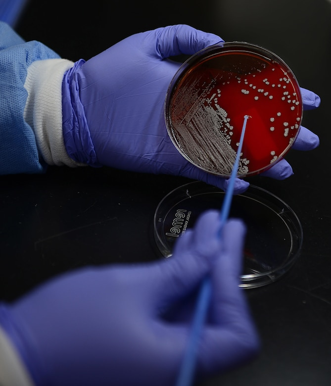 U.S. Air Force Airman 1st Class Julia Maldonado, 633rd Medical Support Squadron Laboratory medical laboratory technician, tests a blood sample at Joint Base Langley-Eustis, Va., June 26, 2017. In order to ensure the most accurate results possible, it is important to follow the physician's instructions, prior to submitting samples. (U.S. Air Force photo/Staff Sgt. Teresa J. Cleveland)