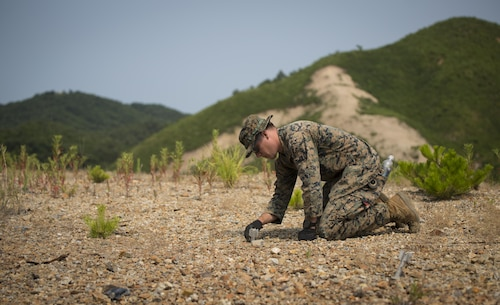 Sgt. Andrew E. Mattson, an explosive ordnance disposal technician, examines unexploded ordnance at Suseongri Live Fire Range near Pohang, Republic of Korea, June 17, 2017, in preparation of Korean Marine Exchange Program 17-7. EOD swept the range to clear it of any UXO allowing the ROK and U.S. Marines to conduct training in a safer environment. KMEP 17-7 is just one of the many opportunities for ROK and U.S. Marines to learn from one another. Boatwright is from Superior, Wisconsin and is attached to 3rd EOD Company, 9th Engineer Support Battalion, 3rd Marine Logistics Group, III Marine Expeditionary Force. (U.S. Marine Corps photo by Lance Cpl. Andy Martinez)