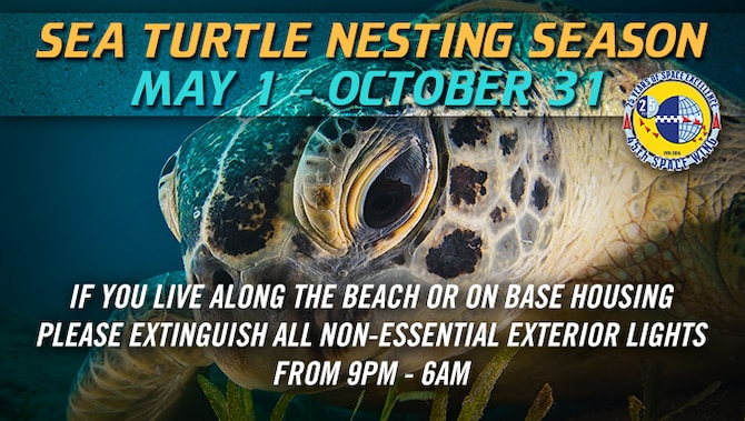 Sea turtle nesting season occurs annually from May 1 to Oct. 31.  The more than 3,000 threatened and endangered loggerhead, green and leatherback sea turtle nests normally deposited on Patrick Air Force Base and Cape Canaveral Air Force Station, account for five percent of all sea turtle nests in the state of Florida.  The 45th Space Wing's exterior lighting policy requires all non-essential lights be turned off during the nesting season. (U.S. Air Force graphic by James Rainier)
