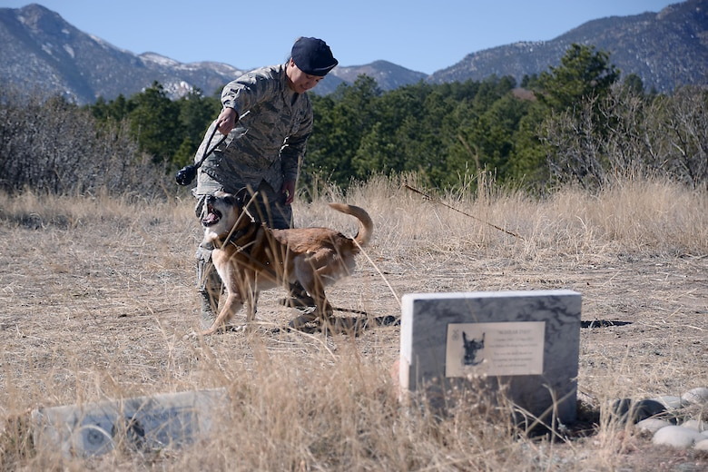 "Senior Airman Alexis Fierro shares a moment with her military working dog, ""Nick,"" at the 10th Security Forces Squadron Military Working Dog Memorial Grounds, March 2, 2017, at the U.S. Air Force Academy. Fierro is one of the squadron's military working dog handlers. Airmen from the squadron are scheduled to give the grounds a complete brush-up March 4, 2017."