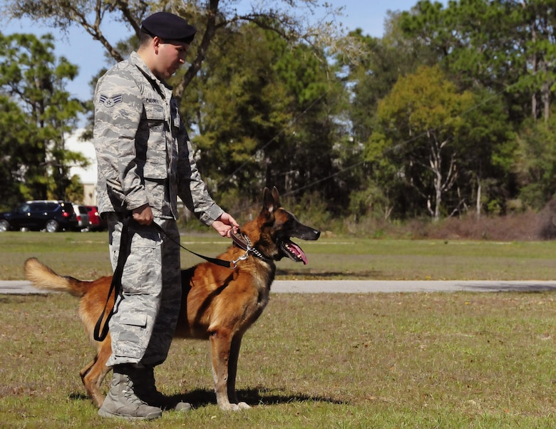 The 96th Security Forces Squadron performed K-9 attack demonstrations during the 919th Special Operations Wing's annual Wing Day March 4 at Duke Field, Fla.  The wing sets aside a special day each year to show appreciation for its reservists and their family members. Events included music, food, children's games, etc. (U.S. Air Force photo/Tech. Sgt. Kimberly Moore)