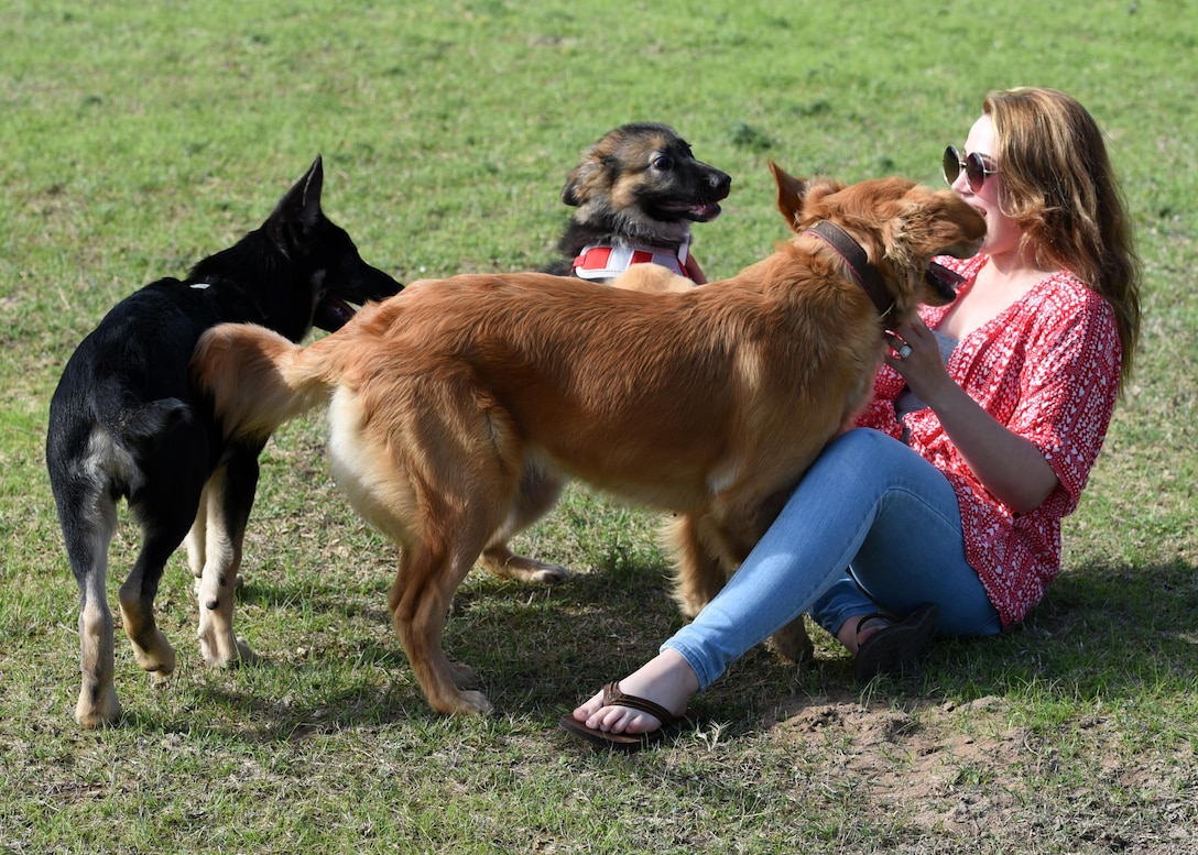 Rachel Bochenko and her 4-month-old puppy, Indy, interact with other dogs while visiting the dog park at Tyndall Air Force Base, Fla., March 1, 2017. A baseball field was recently repurposed to provide a place for both canines and their humans to have a ball. (U.S. Air Force photo by Airman 1st Class Isaiah J. Soliz/Released)