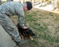 Senior Airman Brandon Caywood, 11th Security Support Squadron military working dog handler, pets Teo, 11th SSPTS MWD, during Teo's retirement ceremony at Joint Base Andrews, Md., March 9, 2017. Teo retired after 10 years as an Air Force explosive detection dog and was adopted by his two-year handler Caywood. (U.S. Air Force photo by Airman 1st Class Valentina Lopez)