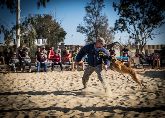 Staff Sgt. Jeffrie Kennedy, 332nd Expeditionary Security Forces Squadron military working dog handler, acts as a decoy during a demonstration scenario, Feb. 25, 2017, in Southwest Asia. MWDs are globally-mobile and multi-functional assets. (U.S. Air Force photo by Staff Sgt. Eboni Reams)