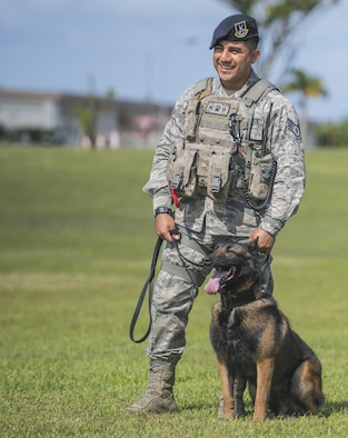 U.S. Air Force Staff Sgt. Juan Salinas, 18th Security Forces military working dog handler with MWD Ayila during a demonstration of the six phases of aggression on Mar. 16, 2017, at Marek Park on Kadena Air Base, Japan. The MWD program is a lateral training at Lackland Air Force Base for three months of training in things like patrolling, searching buildings and basic care for the canines. (U.S. Air Force Photo by Senior Airman Nick Emerick)