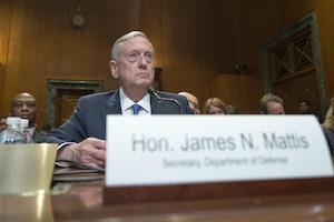 Defense Secretary James N. Mattis discusses the Defense Department's fiscal year 2017 budget request during testimony before the Senate Appropriations Committee, March 22, 2017. DoD photo by Navy Petty Officer 2nd Class Dominique A. Pineiro