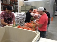 Airmen from the 60th Operations Group at Travis Air Force Base, Calif., help sort and package carrots during a volunteer event at the Solano Food Bank in Fairfield, Calif., March 24, 2017. More than 30 Airmen supported the event and packaged more than 6,700 pounds of food. (Courtesy Photo)