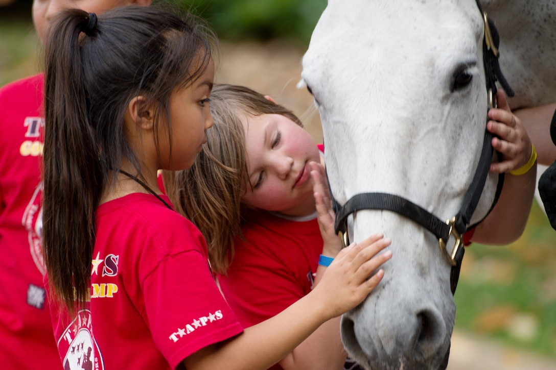 Children pet a horse.