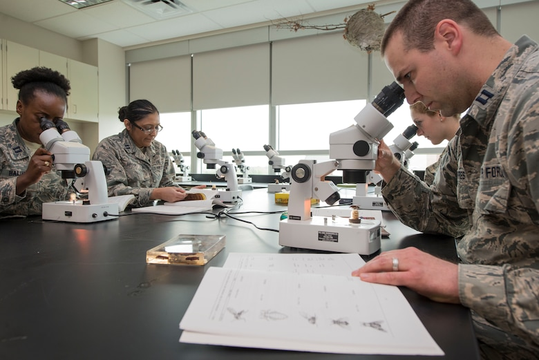 U. S. Air Force School of Aerospace Medicine Public Health Education Division students Capt. Ryan Joerres (right, front), 1st Lt. Lara Esin (right, back) and Capt. Michele Balihe (left, front) and faculty member Capt. Caroline Brooks (left, back), view medically significant insects inside the entomology education laboratory at the Public Health and Preventive Medicine Department, U.S. Air Force School of Aerospace Medicine, Wright-Patterson Air Force Base, Ohio, April 21, 2017. Air Force Public Health students study vectors of disease to better understand how some transmit pathogens, such as Zika, Chikungunya, Dengue and West Nile viruses.
