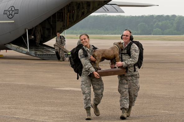 "U.S. Air Force Reserve Tech Sgts. Kristen Garrett and Jason Gibson, air transportation specialists assigned to the 96th Aerial Port Squadron, carry the ""Top-Dawg"" trophy across the ramp upon their arrival April 28, 2017 at Little Rock Air Force Base, Ark. The 96th APS is the first repeat winner since the competition began in 2010. (U.S. Air Force photo by Master Sgt. Jeff Walston/Released)"