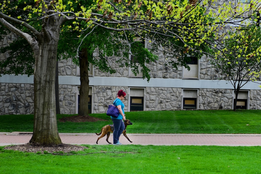Stephanie Shipwash, a graduate assistant at the University of Central Missouri, maneuvers around the campus with her service dog, Gabbie, in Warrensburg, Mo., April 20, 2017. Gabbie came from a local non-profit organization, called Warriors' Best Friend, which trains rescue dogs exclusively to help veterans who separated from the military with post-traumatic stress disorder or traumatic brain injury. (U.S. Air Force photo by Airman 1st Class Jazmin Smith)