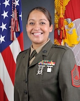 Senior Enlisted Leader, Marine Fighter Training Squadron 401