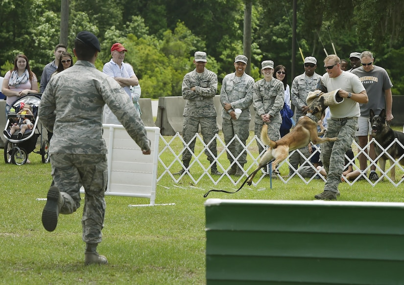 U.S. Air Force Senior Airman Trey Weston, left, 628th Security Forces Squadron military working dog handler, and U.S. Air Force Staff Sgt. Jeremy Vess, right, 628th SFS, performs a demonstration with Ari, MWD,  during a base picnic at the Air Base Picnic Grounds May 5, 2017, at Joint Base Charleston, S.C. Attendees were provided free meals and were able to participate in various activities including face painting, wall rock climbing, live music and a Military Working Dog demonstration.