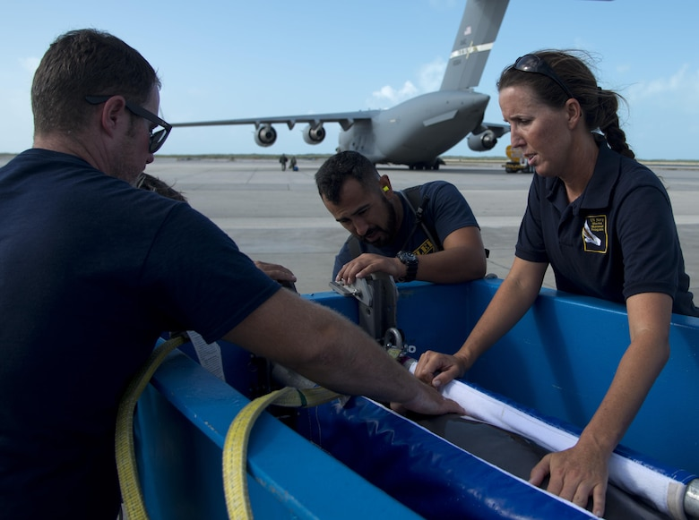 A dolphin from the U.S. Naval Marine Mammal Program is prepped to fly from Key West, Fla., to San Diego, April 29, 2017. The 301st Airlift Squadron transported the dolphins and their handlers to the NMMP where the dolphins train to assist the Navy with locating mines and enemy swimmers. (U.S. Air Force photo/Staff Sgt. Nicole Leidholm)