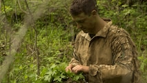A Marine weaves vegetation thorough his ghillie suit before the commencement of stalk training during a training exercise at Fort A.P. Hill, Va., April 26, 2017. Marines conducted the training in preparation for an upcoming deployment as a crisis response force. The Marines are with 2nd Battalion, 2nd Marine Regiment.