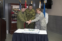 U.S. Air Force General Lori J. Robinson, Commander of the North American Aerospace Defense Command and U.S. Northern Command, Royal Canadian Air Force Lt. Gen. Pierre St-Amand, the NORAD Deputy Commander, U.S. Air Force Staff Sgt. Hillary Melton, and Canadian Army Corporal Alex Loiselle cut the traditional birthday cake during NORAD's 59th Anniversary cerebration  on Peterson AFB, CO May 12th. (DoD Photo by: N&NC Public Affairs/Released)