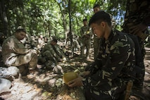 A Philippine Special Forces Soldier explains the nutritional value of a coconut in a jungle survival scenario to U.S. Soldiers, 1st Battalion, 23rd Infantry Regiment, during a subject matter expert exchange in support of Balikatan 2017 at Fort Magsaysay in Santa Rosa, Nueva Ecija, May 13, 2017. U.S. Soldiers trained with Philippine Special Forces to understand the Armed Forces of the Philippines' techniques for operating in a jungle environment. Balikatan is an annual U.S.-Philippine bilateral military exercise focused on a variety of missions, including humanitarian and disaster relief, counterterrorism, and other combined military operations.