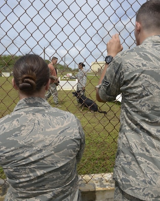 Airmen from the First Term Airmen Center watch a Military Working Dog demonstration during the Pacific Air Power Tour, May 15, 2017, at Andersen Air Force Base, Guam. The purpose of the tour is to introduce new Airmen to various career fields that play a role in getting the mission done. (U.S. Air Force photo by Senior Airman Cierra Presentado/Released)