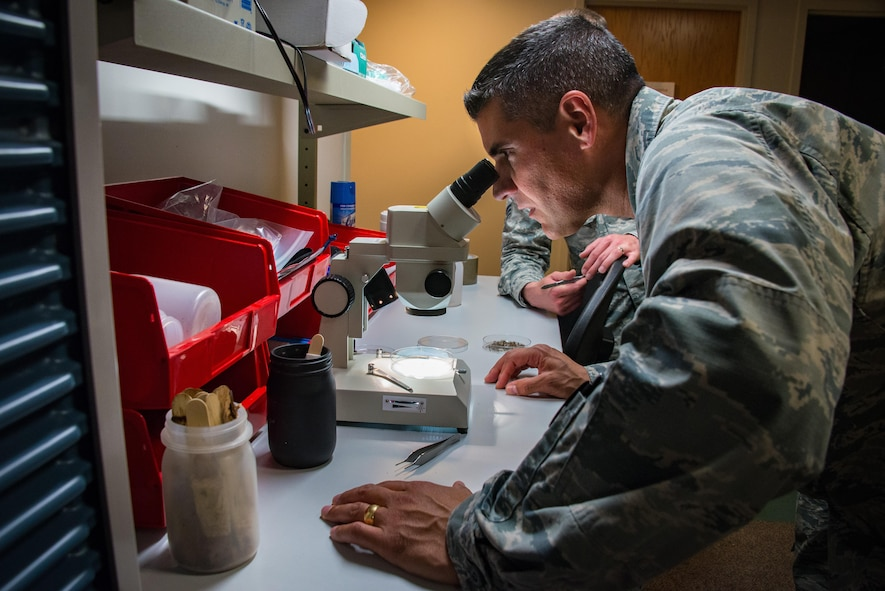 Col. Eric Shafa, 42nd Air Base Wing Commander, examines mosquitoes through a microscope, May 16, 2017, Maxwell Air Force Base, Ala. Shafa and Chief Master Sgt. Erica Shipp, 42nd Air Base Wing Command Chief, visited the 42nd Aeromedical Dental Squadron Public Health Flight.  (US Air Force photo by Melanie Rodgers Cox/Released)