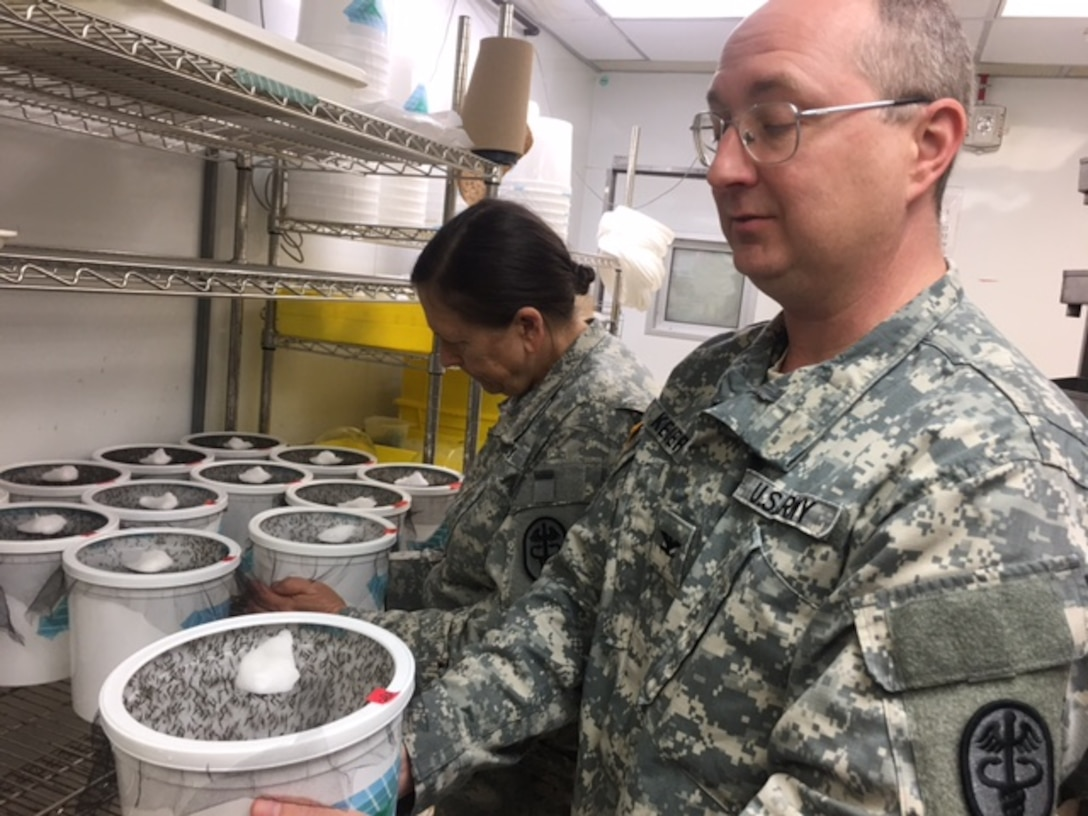 Army Col. Paul Keiser, director of Walter Reed Army Institute of Research's Viral Diseases branch, holds one of the insectary's mosquito habitats at WRAIR in Silver Spring, Md., May 31, 2017.Around 250 adult mosquitos live in each bucket. DoD photo by Rick Docksai