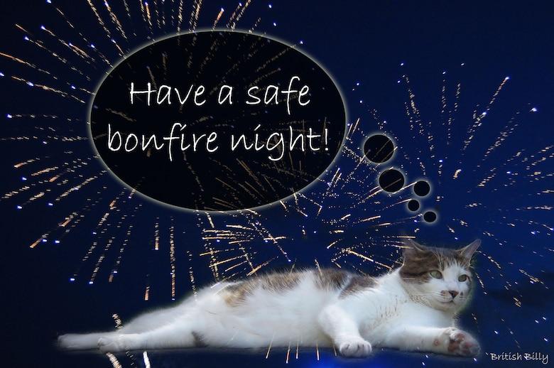 British Billy explains Bonfire Night, Nov. 5