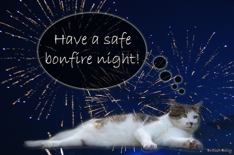 British Billy explains Bonfire Night, Nov. 5