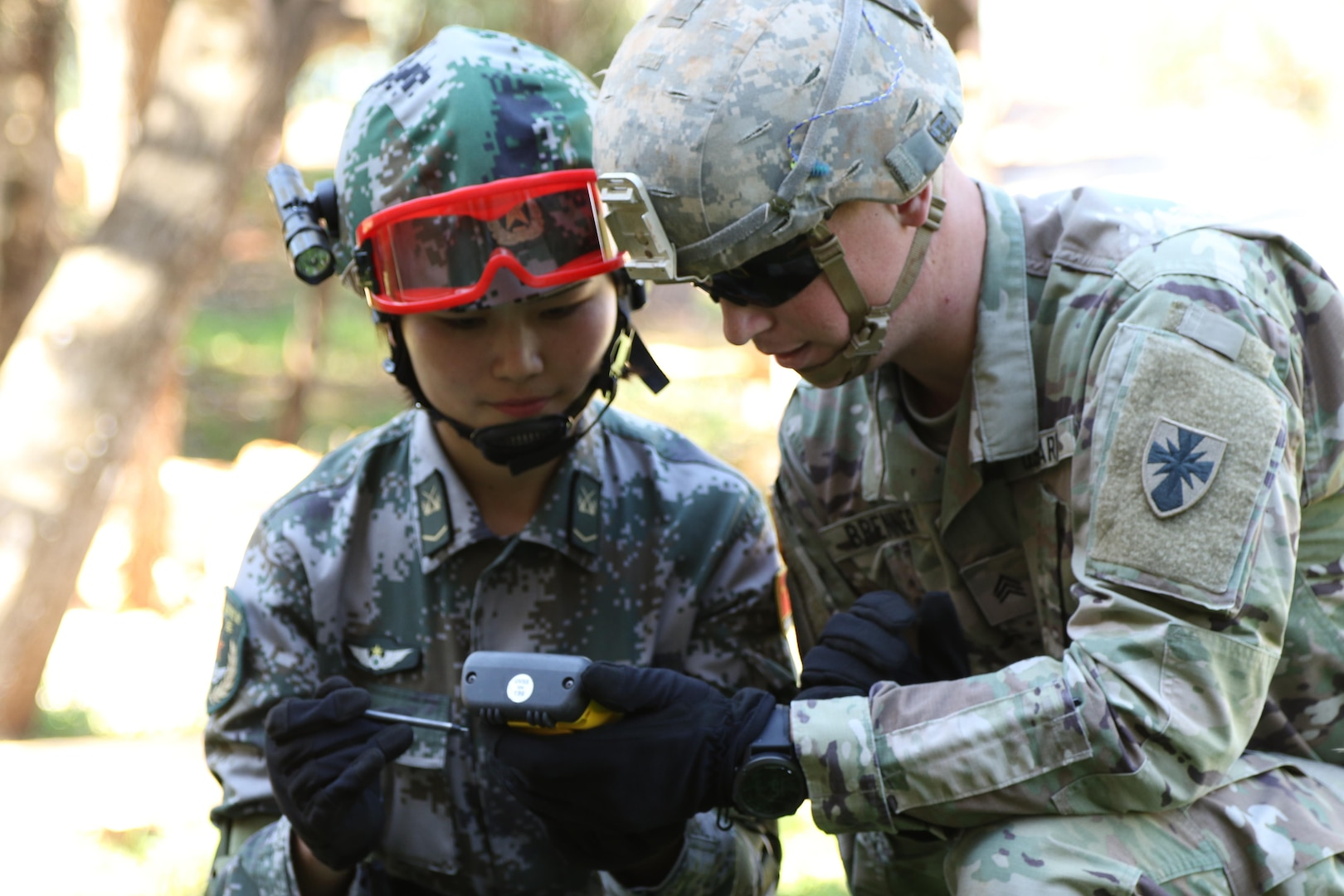 (US Army photo by Spc. Alvin Reeves/Released)