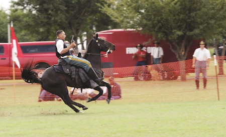 Sgt. Cecil Sanderson, Commanding General's Mounted Color Guard, 1st Infantry Division, brings his horse to a halt after completing his event-winning run during the Bolté Cup at the U.S. Cavalry Association's 2017 Annual Bivouac and National Cavalry Competition, at Fort Reno, Oklahoma, Sept. 30. The Bolté Cup takes the top riders from a myriad of preceding competitions and challenges them with a collection of obstacles including jumping, rifle and pistol marksmanship, mounted saber and a simulated water crossing. Sanderson, who won the cup while pitted against a variety of other Soldier and civilian riders, went on to collect his trophy during an awards ceremony that evening and took the opportunity to credit both of his parents for his success. For the full story on the CGMCG's success at the National Cavalry Competition, pick up next week's issue of the 1st Infantry Division Post.
