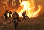 DLA works closely with the U.S. Forest Service, state governments and local fire departments to get firefighters like the Silver State Interagency Hotshot Crew, shown fighting a blaze in the Stanislaus National Forest, California, the equipment they need.