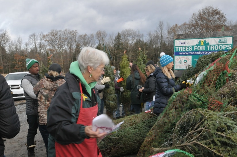 Sally Ellms, of Ellms Family Farm, helps place holiday decorations onto donated Christmas trees with volunteer New York National Guard soldiers and airmen along with local veterans and Patriot Guard Riders for the Trees for Troops shipment at Ellms Family Farm, Ballston Spa, N.Y.