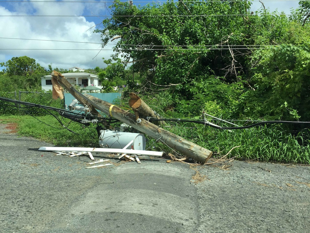 """Fallen power lines and uprooted trees litter the streets of St. Croix where Claudette Wells, an acquisition program manager for the Air Force Technical Applications Center, Patrick AFB, Fla., volunteered to serve as a disaster relief worker for the Federal Emergency Management Agency after Hurricane Maria impacted the island.  """"The damage was unimaginable,"""" said Wells.  (U.S. Air Force photo by M. Claudette Wells)"""