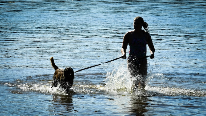 Staff Sgt. Briana Hartwig, 2nd Security Forces Squadron military working dog handler, walks MWD Zzeki in the Black Bayou Lake before a water aggression training session at Benton, La., Sept. 6, 2017. Handlers attempt to conduct water aggression training at a minimum of twice a year. The training session taught MWDs to chase and stop suspects in a body of water without hesitation