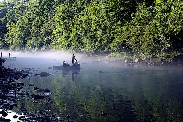 Children fishing in the distance during a free fishing event.