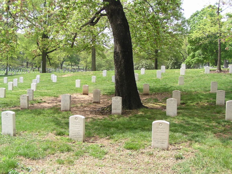 Farrow's grave at Arlington National Cemetery in front of a tree. (Courtesy photo)