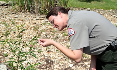 Leah Deeds, natural resources specialist, Little Rock District, U.S. Army Corps of Engineers looks at a pollinator at the Dewey Short Visitor Center at Table Rock Lake.