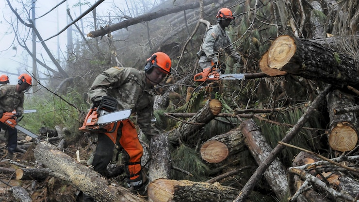 Soldiers use chainsaws to cut up fallen trees to remove them from a road.