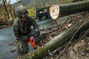 U.S. Marine Corps Sgt. Patrick J. Smith, a combat engineer with Battalion Landing Team 2nd Battalion, 6th Marine Regiment, 26th Marine Expeditionary Unit (MEU), uses a chainsaw to cut through a tree during road clearance operations in Ponce, Puerto Rico, Oct. 9, 2017.
