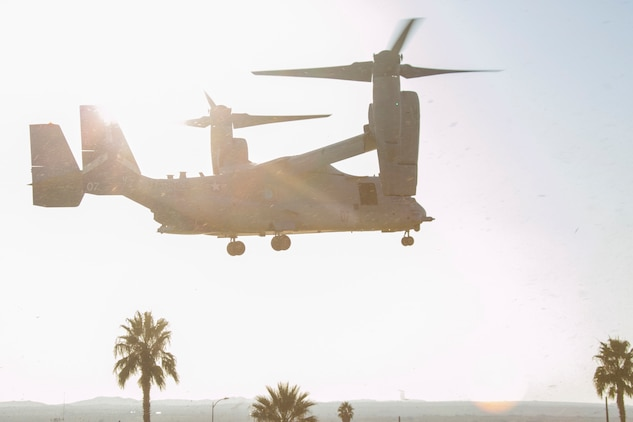 A MV-22 Osprey prepares to land on Lance Cpl. Torrey L. Gray Field aboard the Marine Corps Air Ground Combat Center, Twentynine Palms, Calif., Oct. 13, 2017. The landing was conducted as part of a non-combatant evacuation operation exercise in order to prepare Marines for the evacuation of non-essential U.S. citizens and Department of Defense personnel from dangerous situations overseas. (U.S. Marine Corps photo by Lance Cpl. Isaac Cantrell)