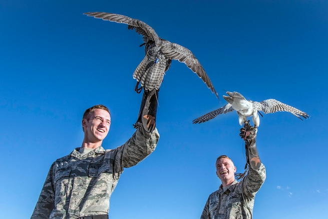 Two cadets each hold up a falcon on their arms.
